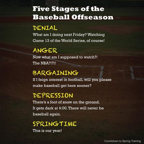 5 stages baseball offseason