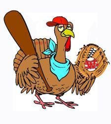 turkey_player_large