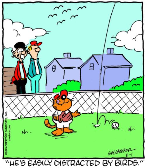Cat baseball comic